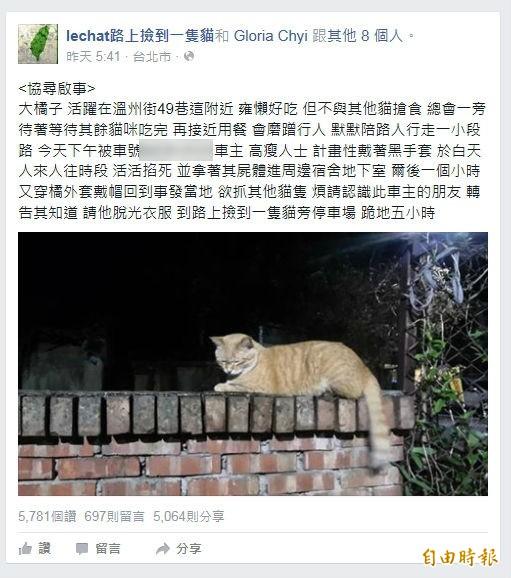 網友po文盼能協尋虐貓者。(擷自網頁)