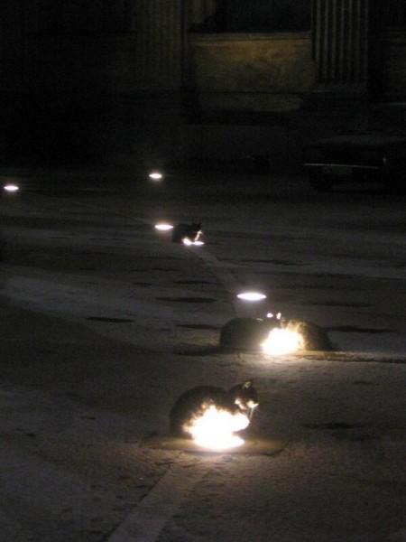 「路燈不夠看!這一排地燈都是我的暖暖窩!」(設計對白)(圖擷取自Minerva部落格)