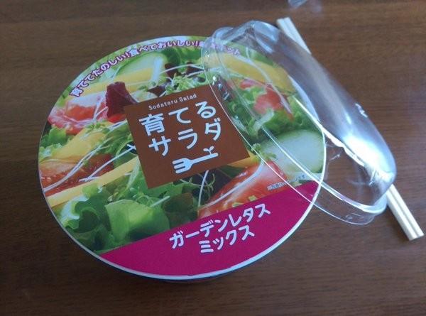 日本全家新產品「沙拉培育組」外觀與一般沙拉無異,讓網友誤買。(圖擷取自Itokichi推特)