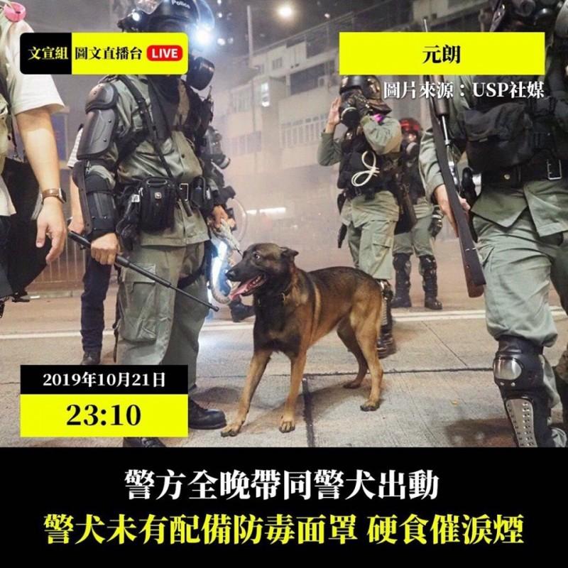 香港警方帶同警犬在元朗地區多次發射催淚彈清場。(圖擷取自TG_文宣組圖文直播台)