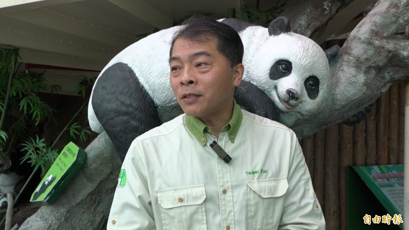 照顧大貓熊有11年經驗的飼育員陳屹彪說,這份工作最開心的就是能跟大貓熊有良好的互動。(記者張家寶攝)