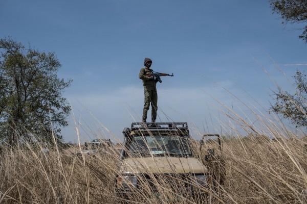贊成解禁的國家認為,「適量的放鬆管制」能夠透過與大象相關的商業貿易賺得保育與反盜獵的費用。圖為非洲的武裝保育人員「護林者」。(法新社)