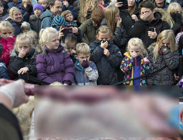 不少好奇的學童也到場參觀,但從相關照片仍可見到部分學童掩面不敢觀看,或面有難色。(法新社)