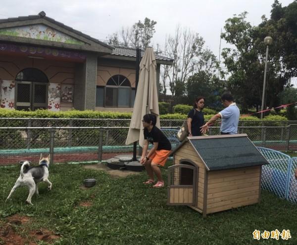 「南屯動物之家」管顧環境良好,連續2年獲得全國最優動物收容場所肯定。(記者黃鐘山攝)