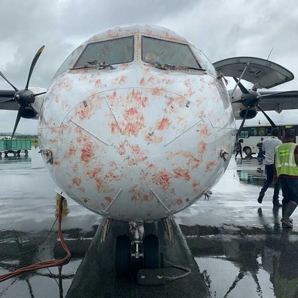 遭鳥群撞擊後機身血跡斑斑。(圖取自Aviation Tanzania臉書專頁)