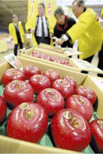 日本岩手縣出產的太陽富士蘋果在拍賣會上被喊到一箱28顆要價新台幣約27萬元,平均每顆新台幣約9700元。(圖擷取自讀賣新聞)