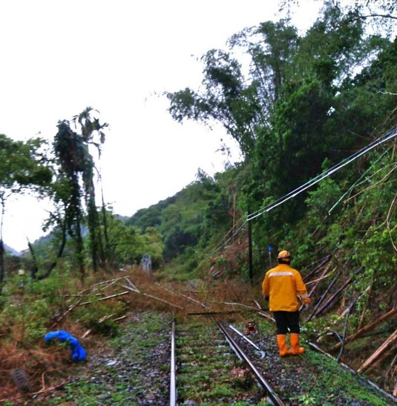 台鐵集集支線龍泉=集集間(K16+600)今天下午有多棵路樹倒塌,火車無法通行,已於17點35分搶修完畢。(擷取自fun臺鐵臉書)