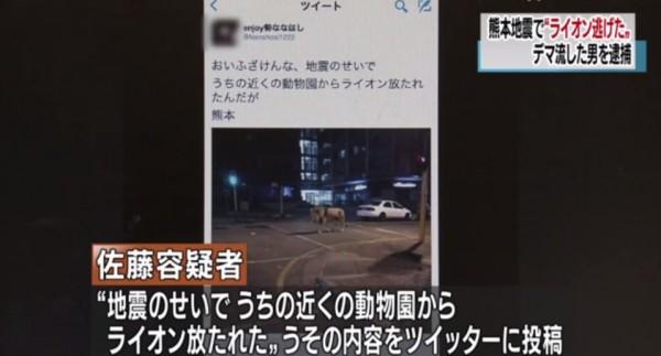 佐藤一輝於於今年4月14日熊本發生第一波強震後,在推特指稱有獅子從動物園逃脫。(圖擷自YouTube)