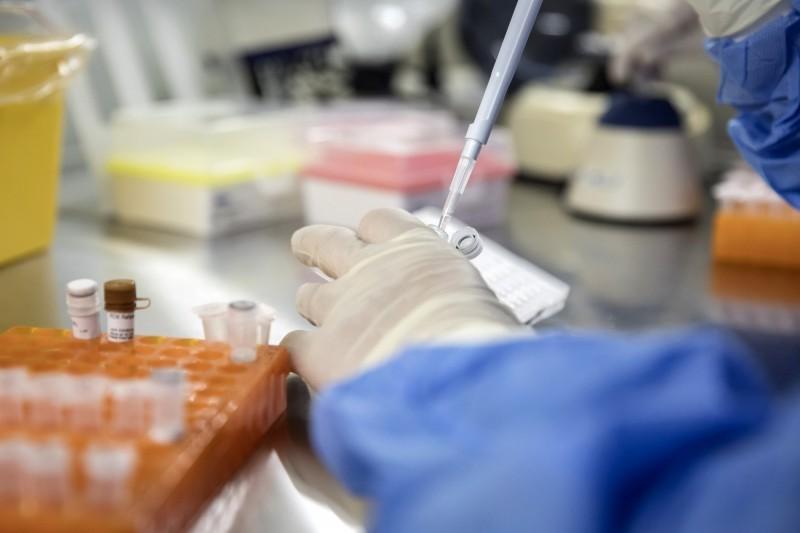 AI 醫療|日東大開發癌症AI診斷 從分析基因到推薦治療一手包 -  - 自由時報電子報