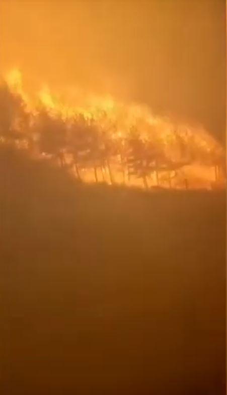 中國山西沁園發生森林大火,已有多個村鎮被燒毀。(圖擷自中國新聞網 YouTube)