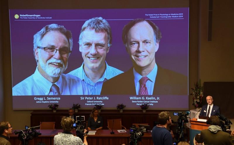 諾貝爾生醫獎今天下午頒獎給英國和美國的學者,表彰他們研究「細胞如何適應缺氧環境」。(法新社)
