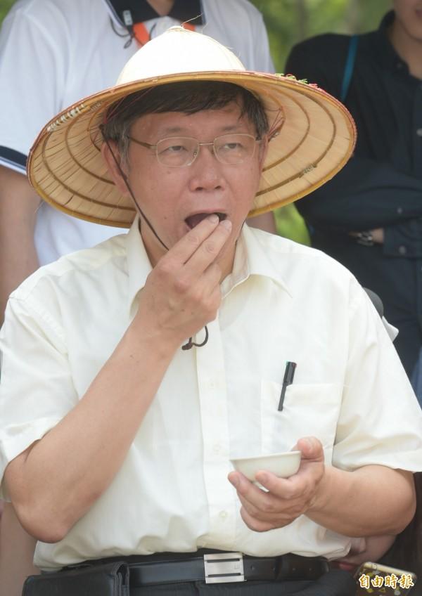 民進黨選對會今上午召開會議,台北市長布局拍板自提人選,不再與台北市長柯文哲合作。(資料照)