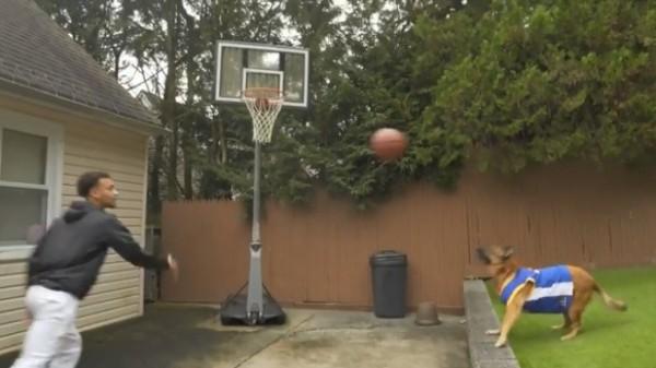 國外一名花式籃球員上傳了一支與狗狗Kao合作完成的「空接」(Alley-oop)灌籃影片。(圖擷取自IG maxwellpearce1)