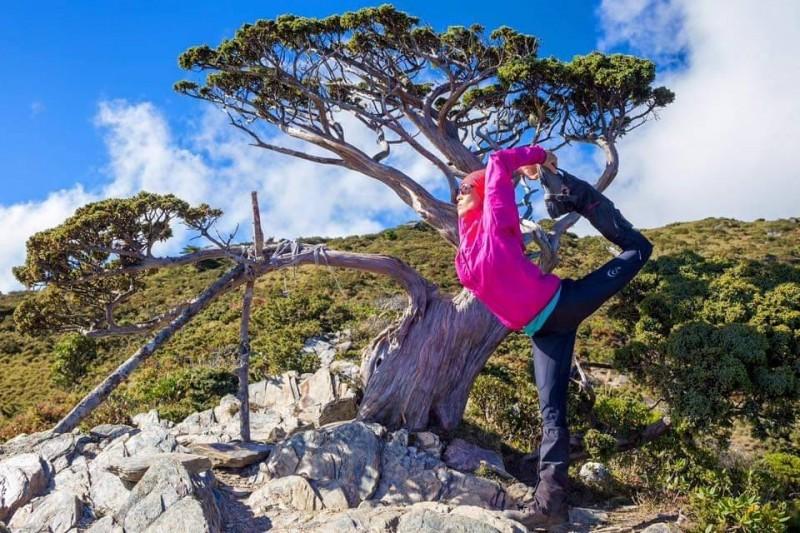 何茜芸在前往嘉明湖時,在「向陽名樹」前做出舞王的動作。 (何茜芸提供)