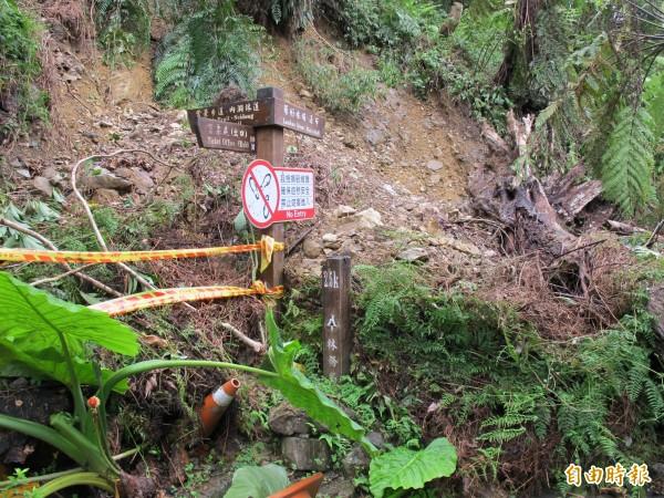 內洞森林遊樂區也被颱風颳傷休園,第1個涼亭前也坍一堆。(記者黃昭國攝)