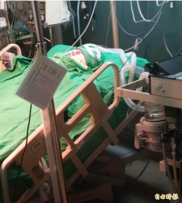 八仙塵爆意外發生至今已快8個月,其中一名傷患林佩璇不僅遭到嚴重灼傷,還因故腦部受損,一度被醫生宣判為植物人,不過在家人不放棄下,現在的她不但奇蹟甦醒還能重新開口說話。(家屬提供,記者蔡淑媛翻攝)