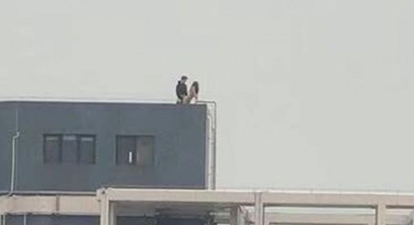 中國男女在頂樓野戰,被隔壁棟民眾拍下po網。(圖擷取自中國論壇)