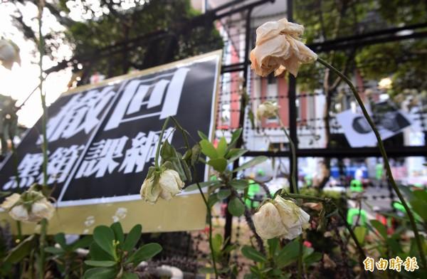反課綱微調的學生與民眾5日持續佔領教育部前廣場,抗爭佔領已邁入第118小時,連日下來,象徵抗爭活動的白玫瑰都已枯萎。(記者廖振輝攝)