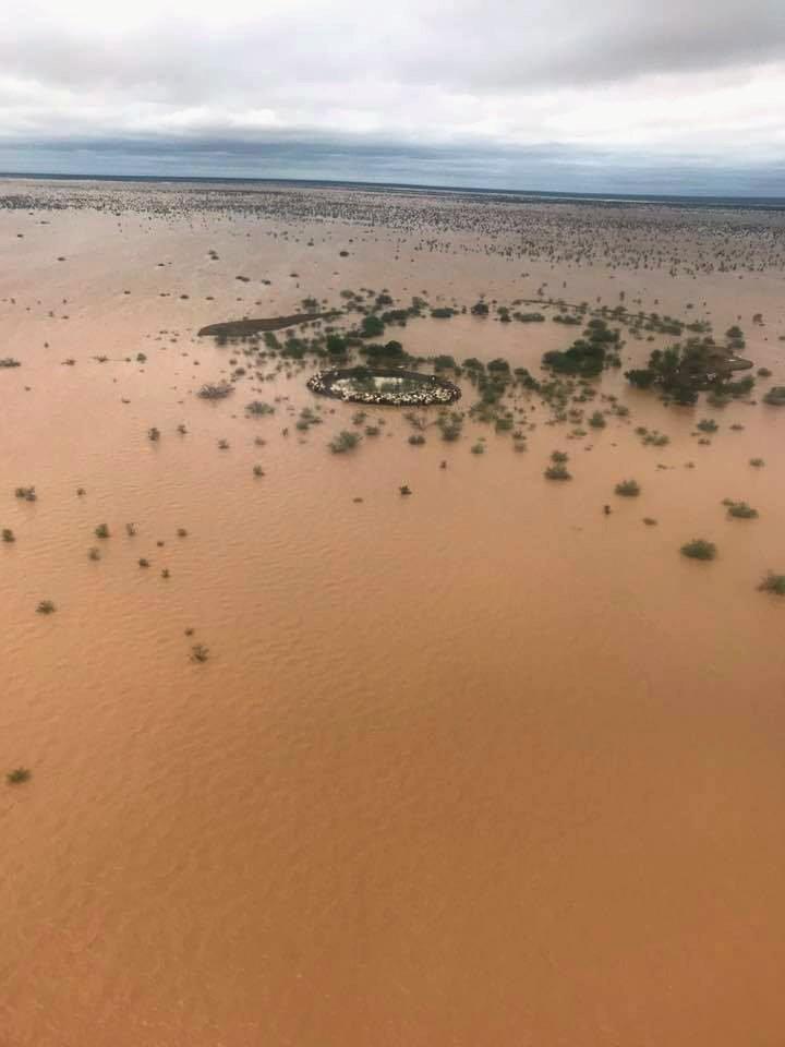 百年一遇大洪災肆虐昆士蘭州。(路透)