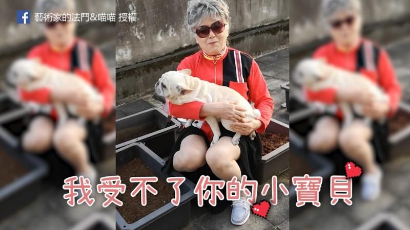 75歲的阿嬤跟4歲法鬥感情超好,祖孫感情令人稱羨。(粉專藝術家的法鬥&喵喵 授權)