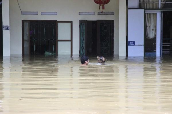 越南北部連日暴雨成災,多數民宅都被摧毀。(美聯社)