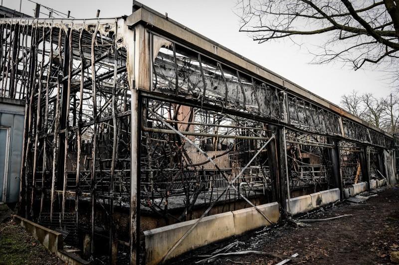 這起悲劇發生在北萊茵─威斯伐倫邦的克雷菲爾德(Krefeld)動物園,被大火完全燒毀的是1975年開放的溫室形式猿猴館。(歐新社)