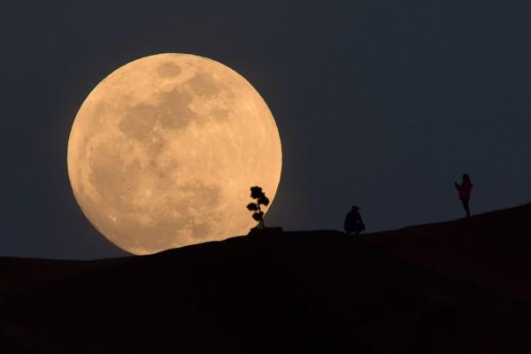 美國國家航空暨太空總署(NASA)又有新一波登月計畫,希望可以讓太空人長期住在月球上。圖為示意圖。(資料照,法新社)