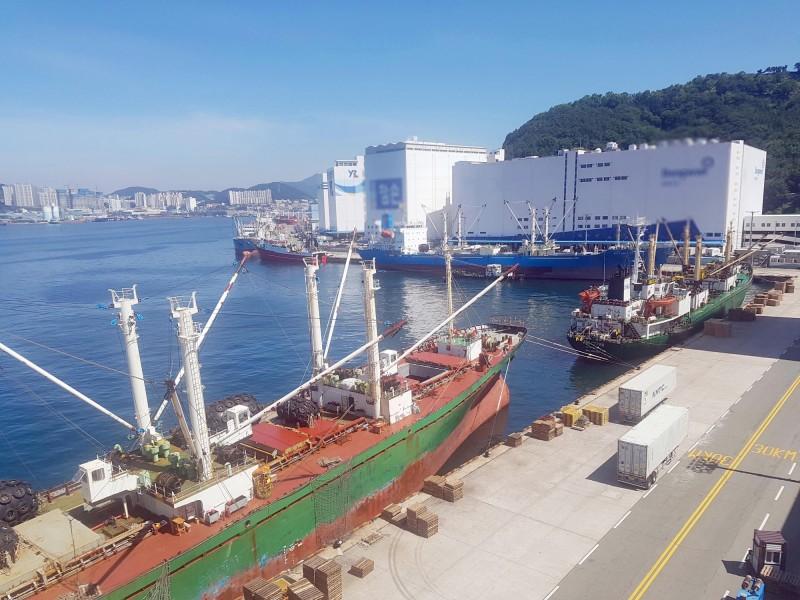 上月南韓釜山出現俄籍船隻群聚感染16人確診,現又1艘俄籍漁船有3名船員確診。釜山港示意圖,與本新聞無關。(歐新社)