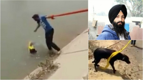 錫克教徒辛格為了救溺水的小狗,不惜破戒摘下頭巾。(圖擷取自METRO)
