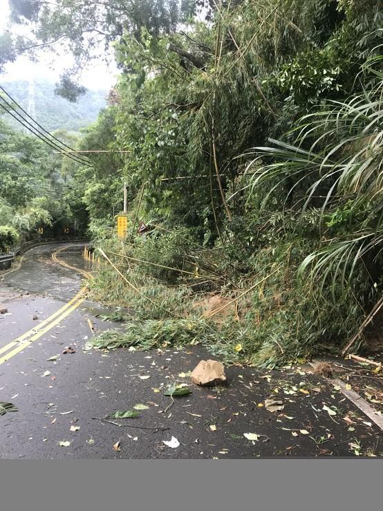 南庄山區經一夜狂風暴雨,樹倒落石砸路,所幸災情不嚴重,皆已陸續搶通。(記者鄭名翔翻攝)