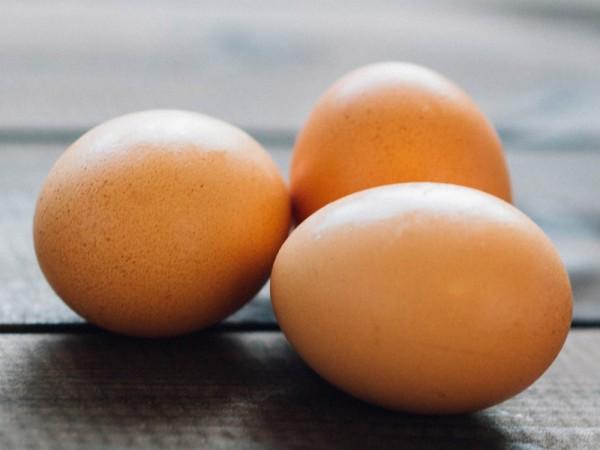 美國Rose Acre Farms於北卡羅萊納州產出的2億多顆雞蛋,傳出有沙門氏菌風險,已全面召回中。(圖擷自Rose Acre Farms官網)
