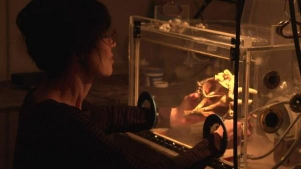 在確診後得知自己是重金屬中毒,格恩瑟決定完成「亞當」,在透明塑膠箱中慢慢研磨貝殼,讓粉塵不再溢散。(圖擷取自BBC)