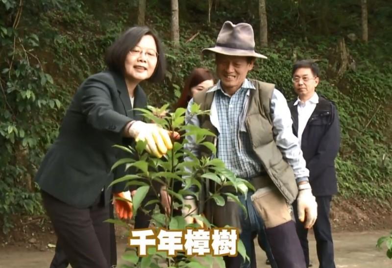 總統蔡英文(左)在「賴桑」賴倍元(右)協助下,種下牛樟樹的樹苗。(圖擷取自臉書_林務局-森活情報站)