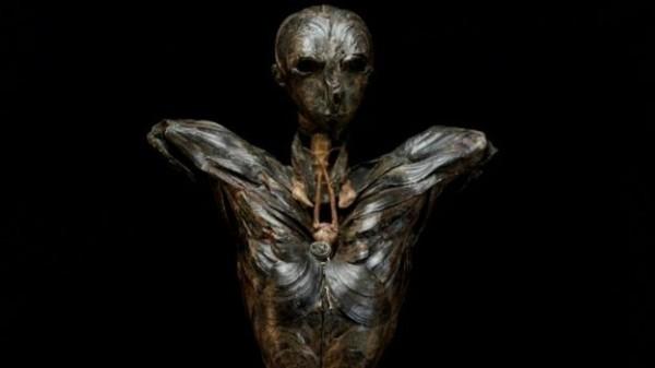 格恩瑟花15年時間,使用淡菜貝殼雕塑出「亞當」(如圖),但她在雕塑亞當的過程中,身體狀況卻越來越差。(圖擷取自BBC)