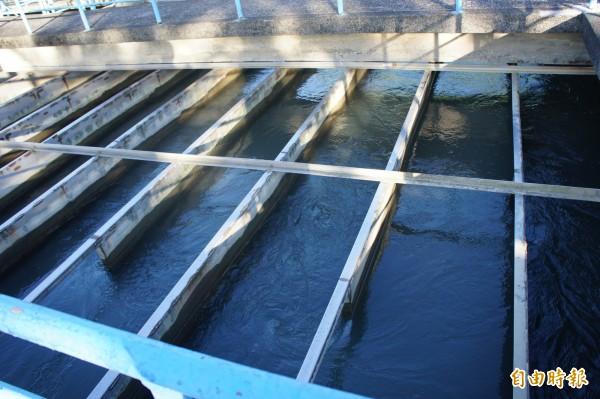 台北自來水事業處參考日本防災作法,規劃在北市設置七十口防災水井。圖為水處示意圖。(資料照,記者黃建豪攝)