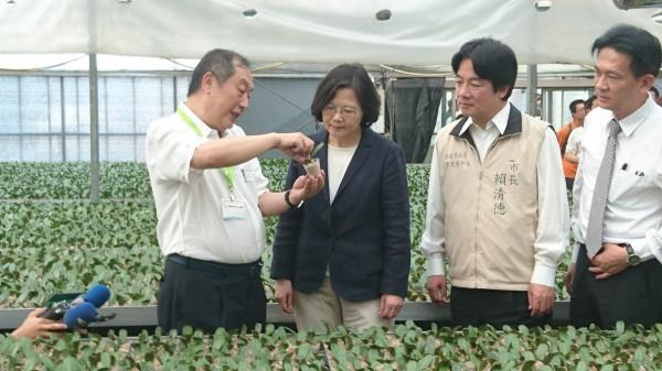 總統當選人蔡英文17日參訪台霖生物科技,了解蘭花產業狀況。(記者劉婉君攝)