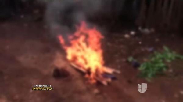 瓜地馬拉有村民將蜜熊誤認為民間傳說中的吸血怪物「卓柏卡布拉」,因此將牠殺死後焚屍。(圖擷取自鏡報)