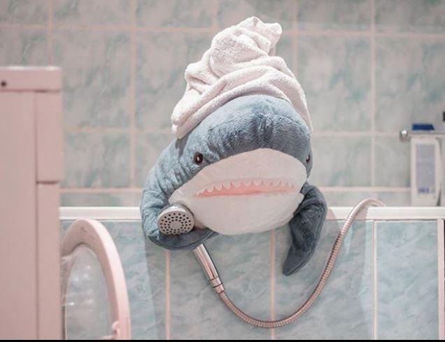 鯊魚抱枕在全球爆紅,日本的IG和推特更是滿滿的「風吹鯊」。(圖擷取自IG limpfu)