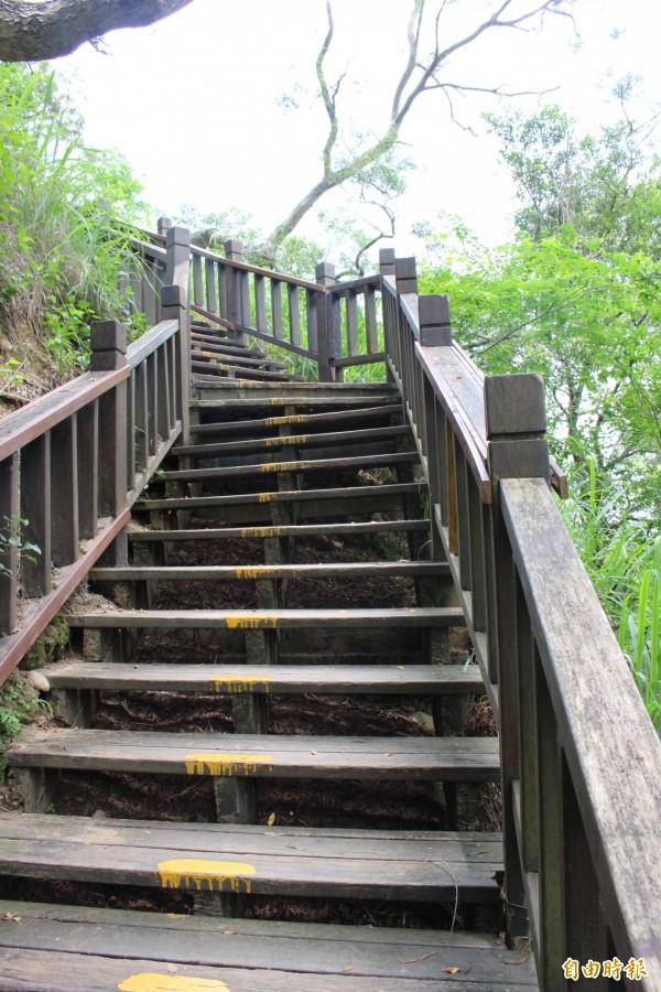 步道木棧道順著坡度而建。(記者張聰秋攝)