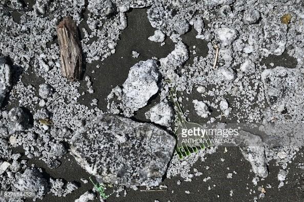 漏油事件引起部分居民和環保團體人士不滿。(圖擷自Getty Images)