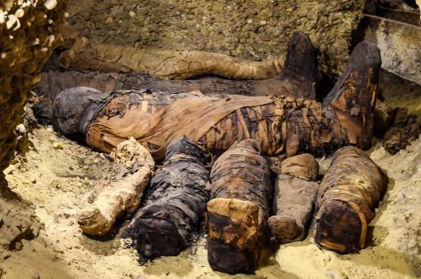 這40多具木乃伊包括12名孩童和6隻動物,其他則是成年男女。(法新社)