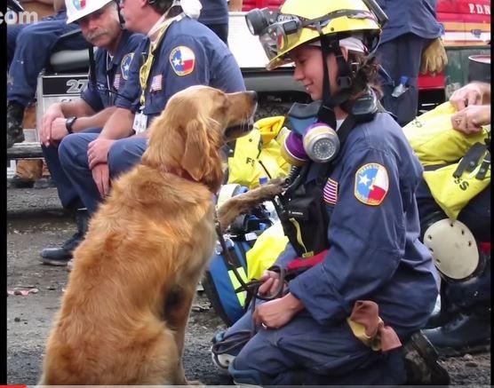 布列塔尼在911事件發生時,成功完成許多搜救任務。(圖擷自YouTube)