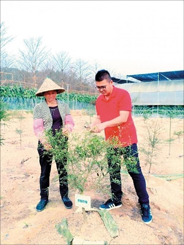 39歲台青蔡志陽(右),獲聘擔任中國福建「漳浦縣台籍科技特派員」,被中國官媒「新華社」當成宣傳樣板。(取自網路)