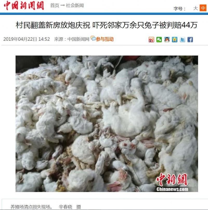 張姓男子的養殖場損失高達48萬2630元人民幣(約新台幣222萬元)。(圖擷取自中國新聞網)