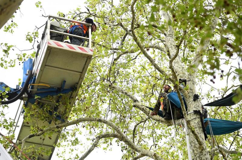 警方出動特殊裝備驅趕在樹上紮營的抗爭民眾(法新社)。
