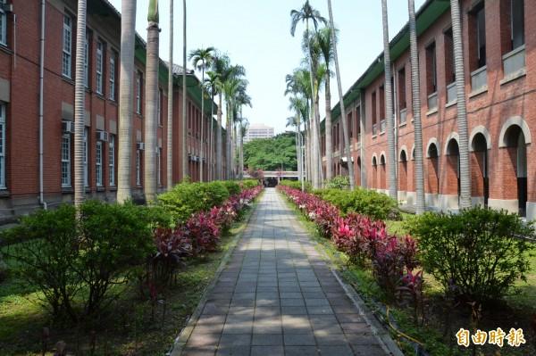 圖為台灣大學校園。(資料照,記者吳柏軒攝)