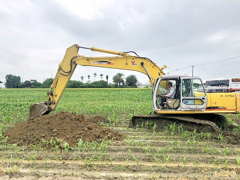 A mechanical digger in Chiayi County yesterday destroys a corn field affected by fall armyworms.  Photo copied by Lin I-chang, Taipei Times