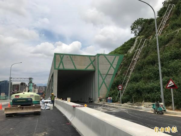沿山坡闢建的安和支線設有一條綠色隧道。(記者張安蕎攝)