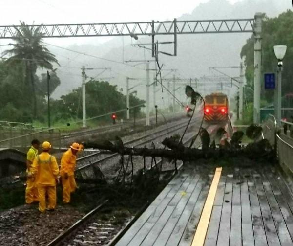 山里車站大樹因強風倒下壓斷電車線,台鐵人員已前往搶修。(台鐵提供)