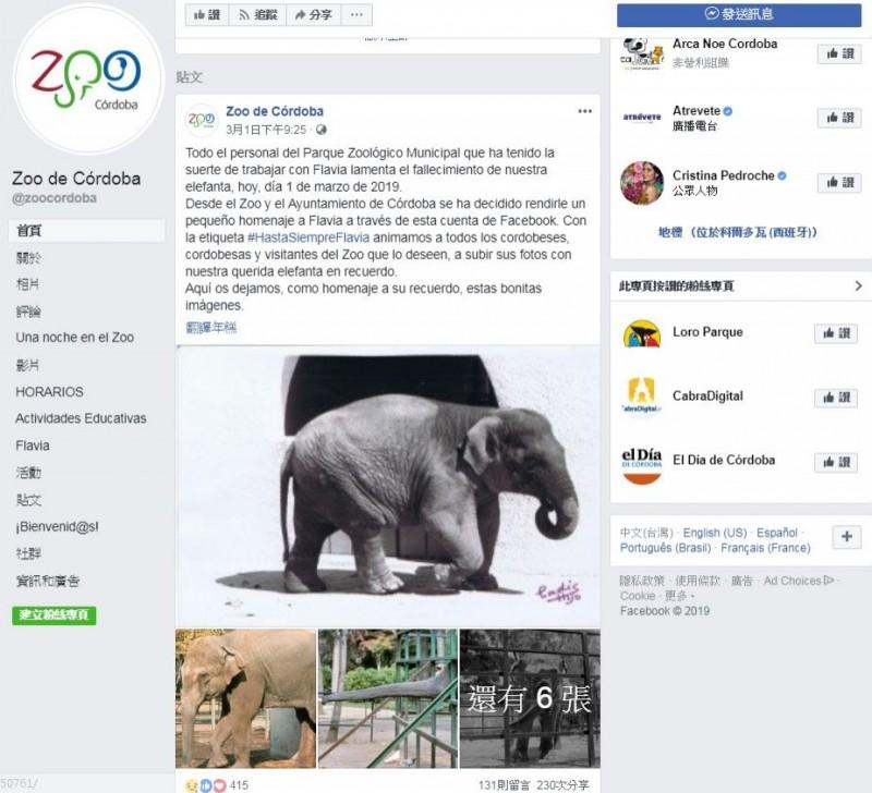 大象法維亞被殘忍獨囚43年,有著「世界上最悲慯大象」的封號。(圖擷自臉書)